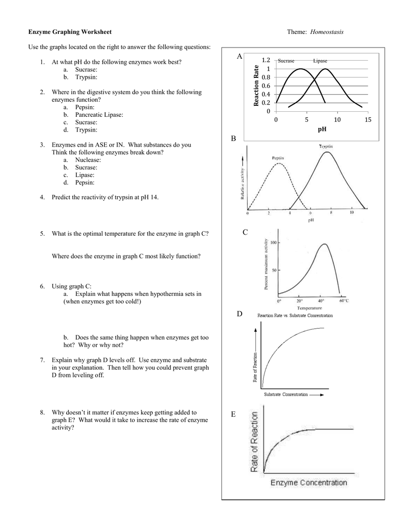 Graphing Activity Worksheet Answers