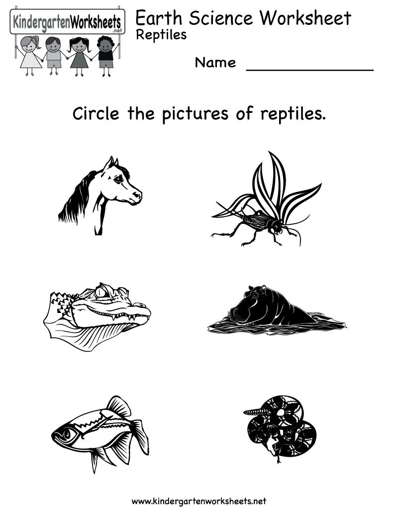 Ideas About Free Kindergarten Worksheets On Pinterest Science Fun