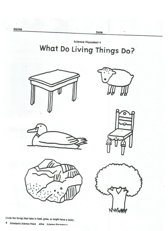 Living And Nonliving Worksheets Kindergarten Vs Worksheet Free