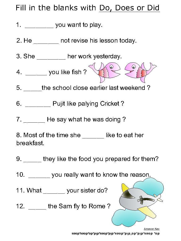 Verb Do Does Worksheets