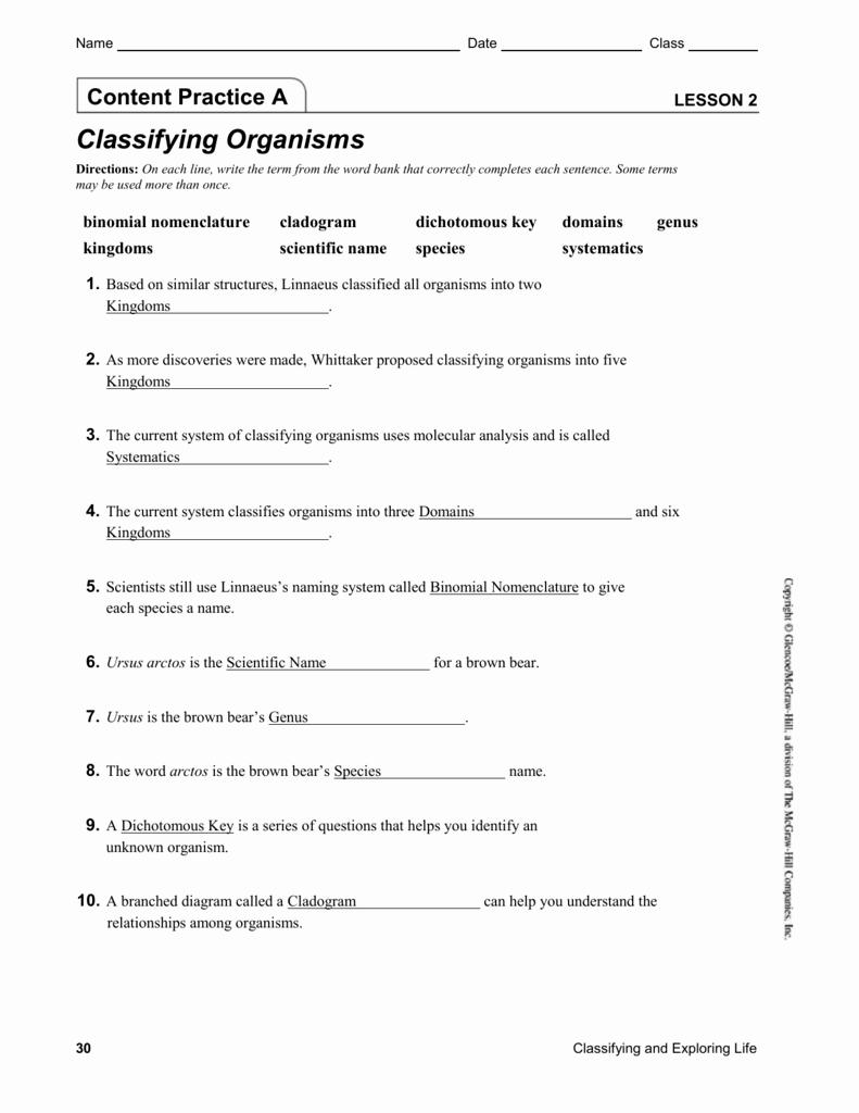 Worksheet  Classification Of Life Worksheet Answers  Hate Mysql