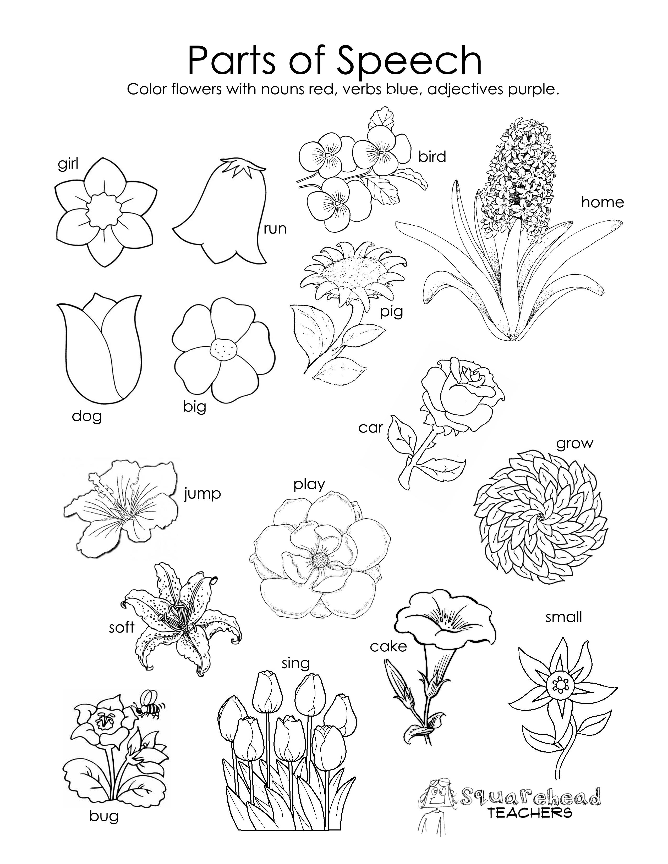 Worksheet  Flower Worksheets For Preschool  Lindacoppens Worksheet