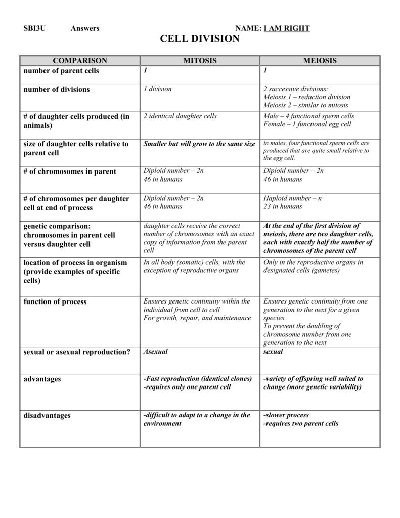Worksheet  Mitosis Vs Meiosis Worksheet Answers  Grass Fedjp