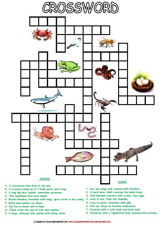 Animal Classification Activity Worksheets Worksheet