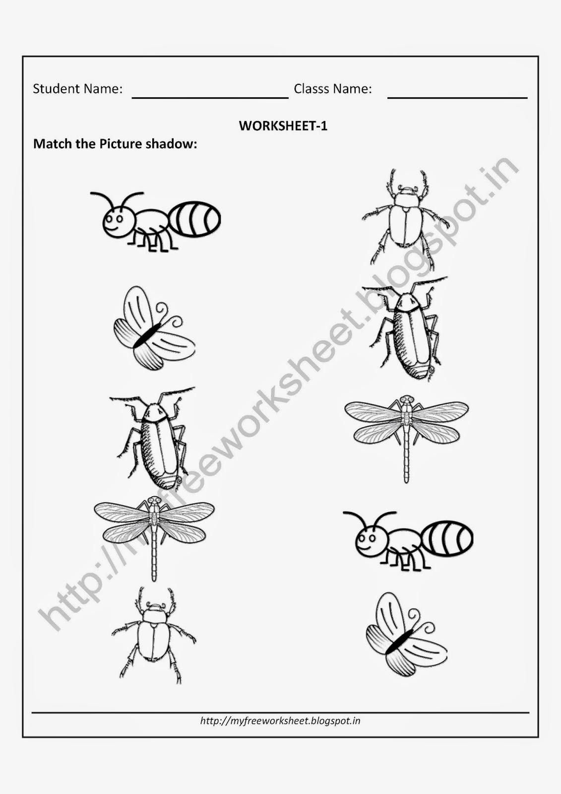 Evs Worksheets For Kindergarten 498953