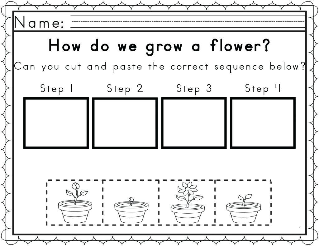 Free Plant Printables For Kindergarten