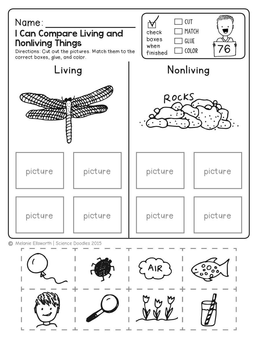 Free Science Worksheet! Kids Love This! …