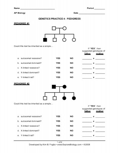Genetics Pedigree Worksheet Com