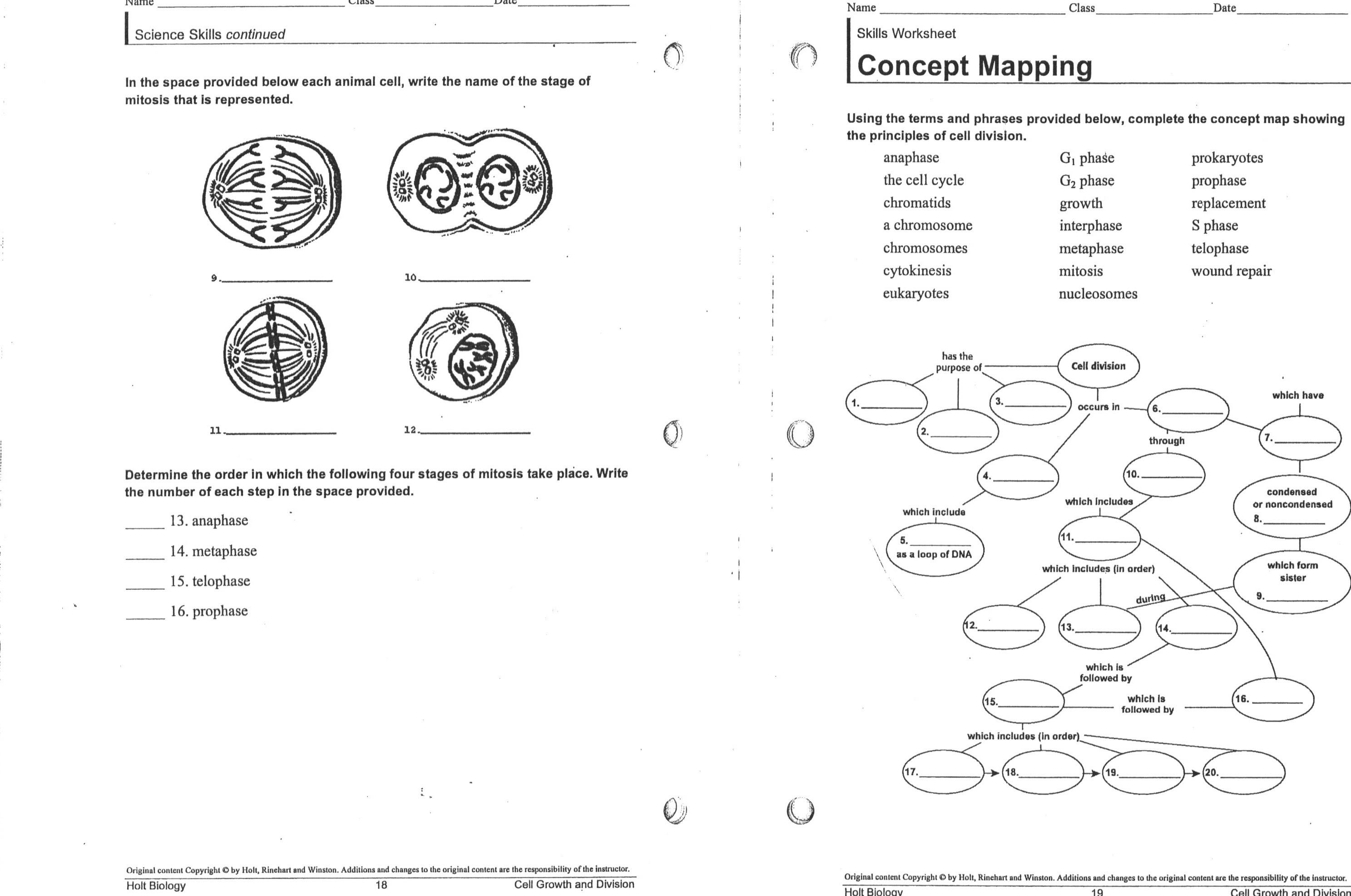 High School Biology Worksheets The Best Worksheets Image