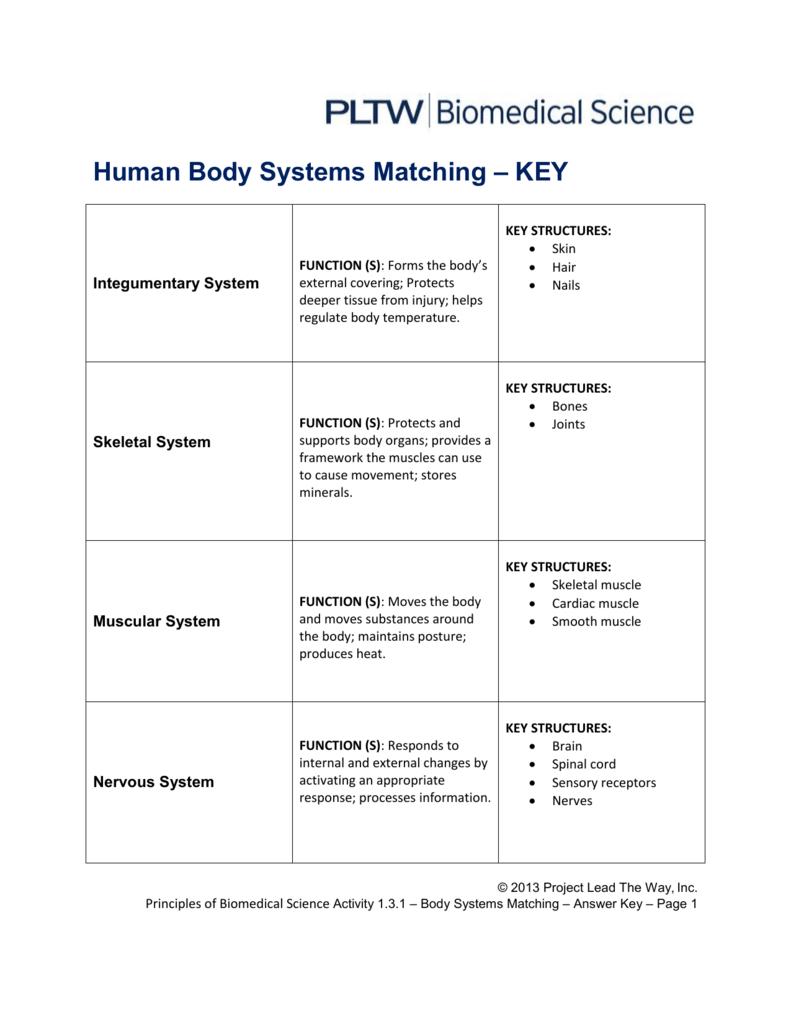 Human Body Systems Matching – Key