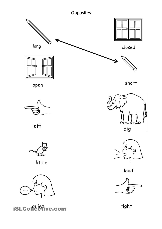 Kindergarten English Grammar Worksheet Printable Antonyms Matching