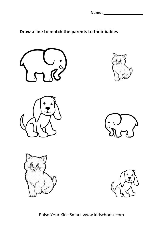 Kindergarten Picture Matching Worksheets Animals Kidschoolz
