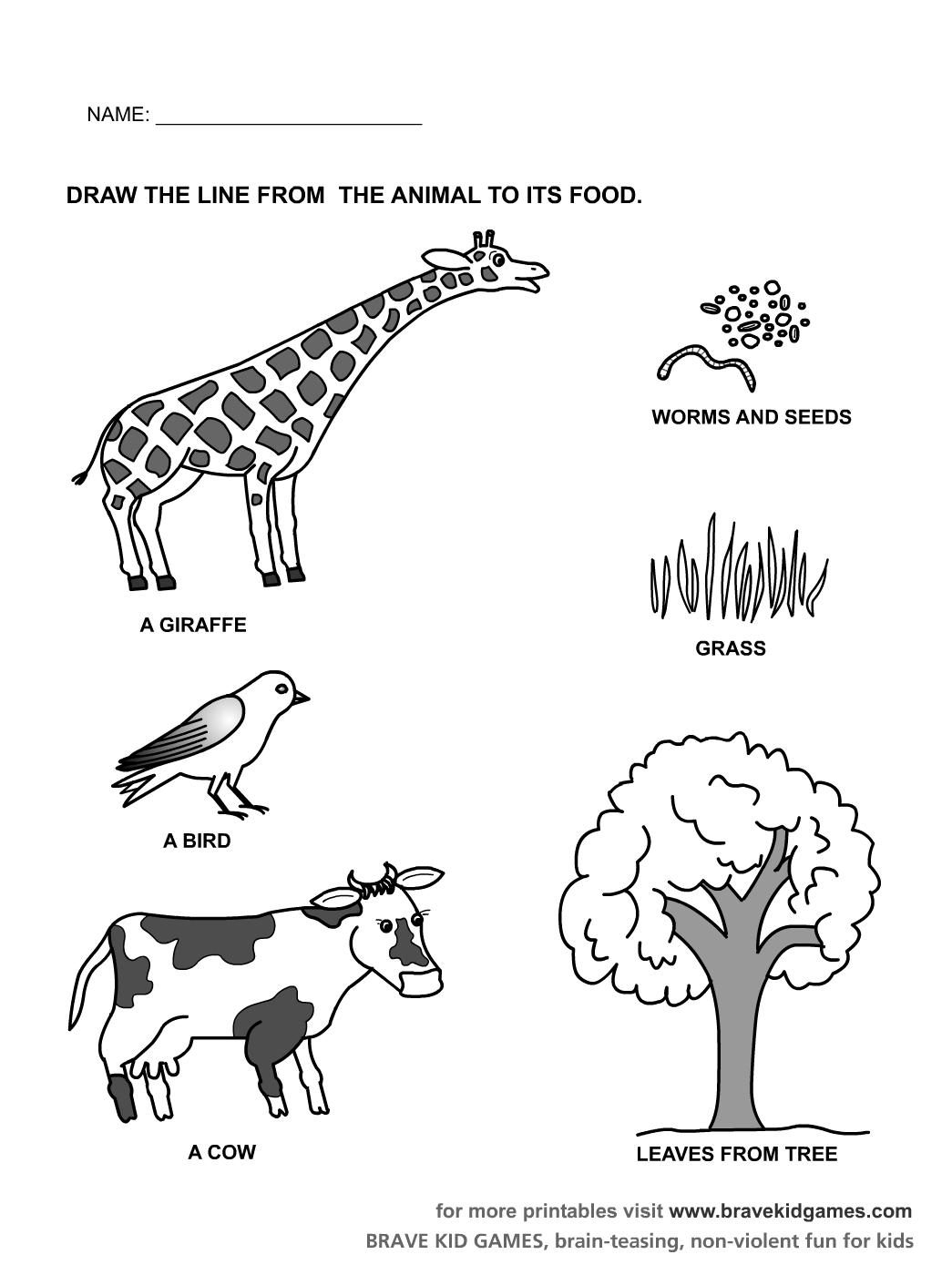 Kindergarten Worksheets Preschool Printables For Zoo Animal