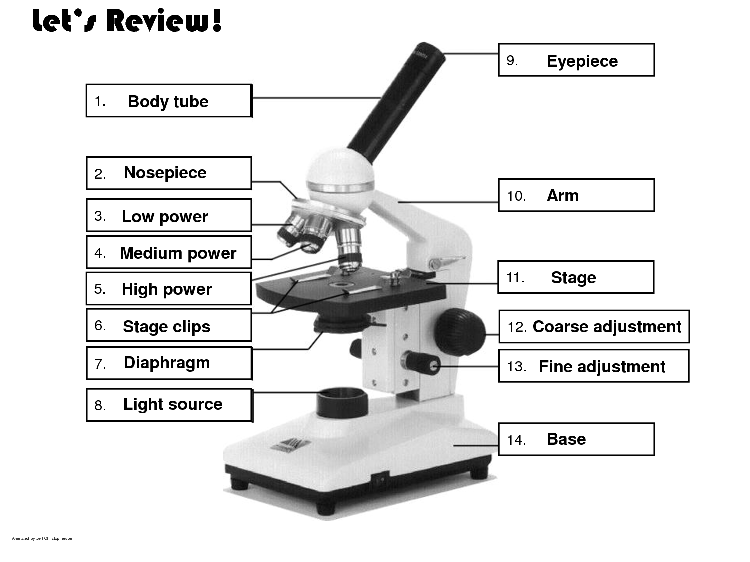Label A Microscope Worksheet