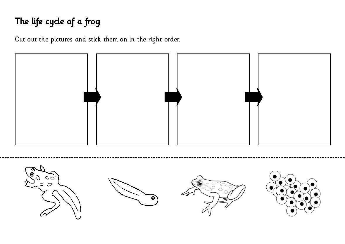Likesoy » Water Cycle Worksheet Kindergarten Great Coloring Page