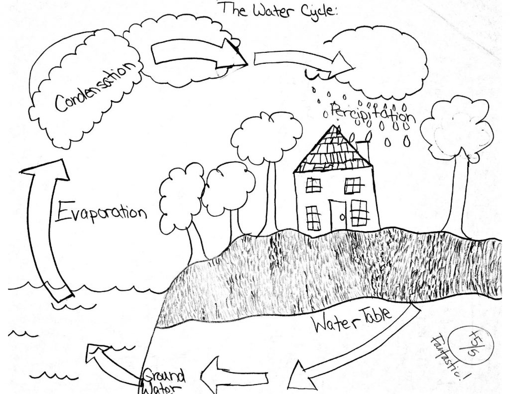 Math Worksheets Water Cycle Worksheet Forergarten Cycles In Nature