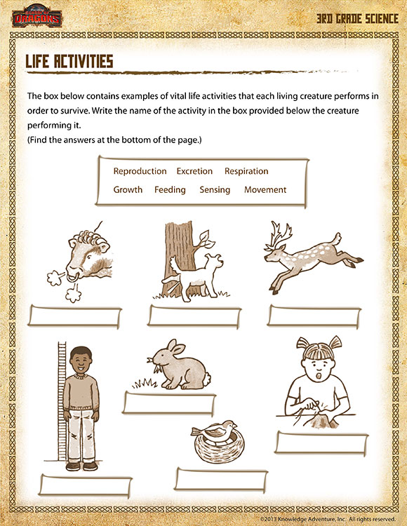 Printable 3rd Grade Worksheets Image Collections