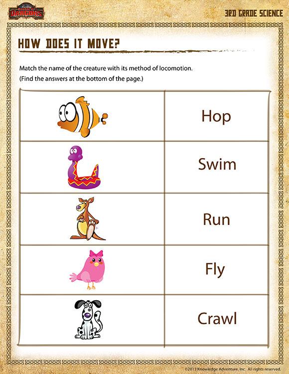 Science Worksheets For 3rd Grade Free The Best Worksheets Image