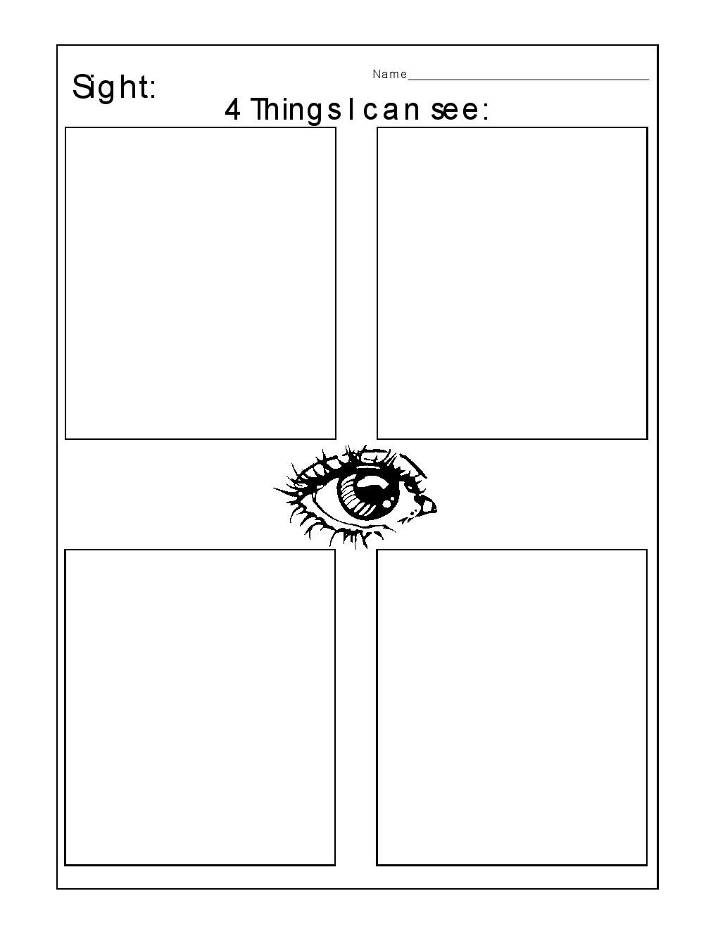 Sense Of Sight Worksheet