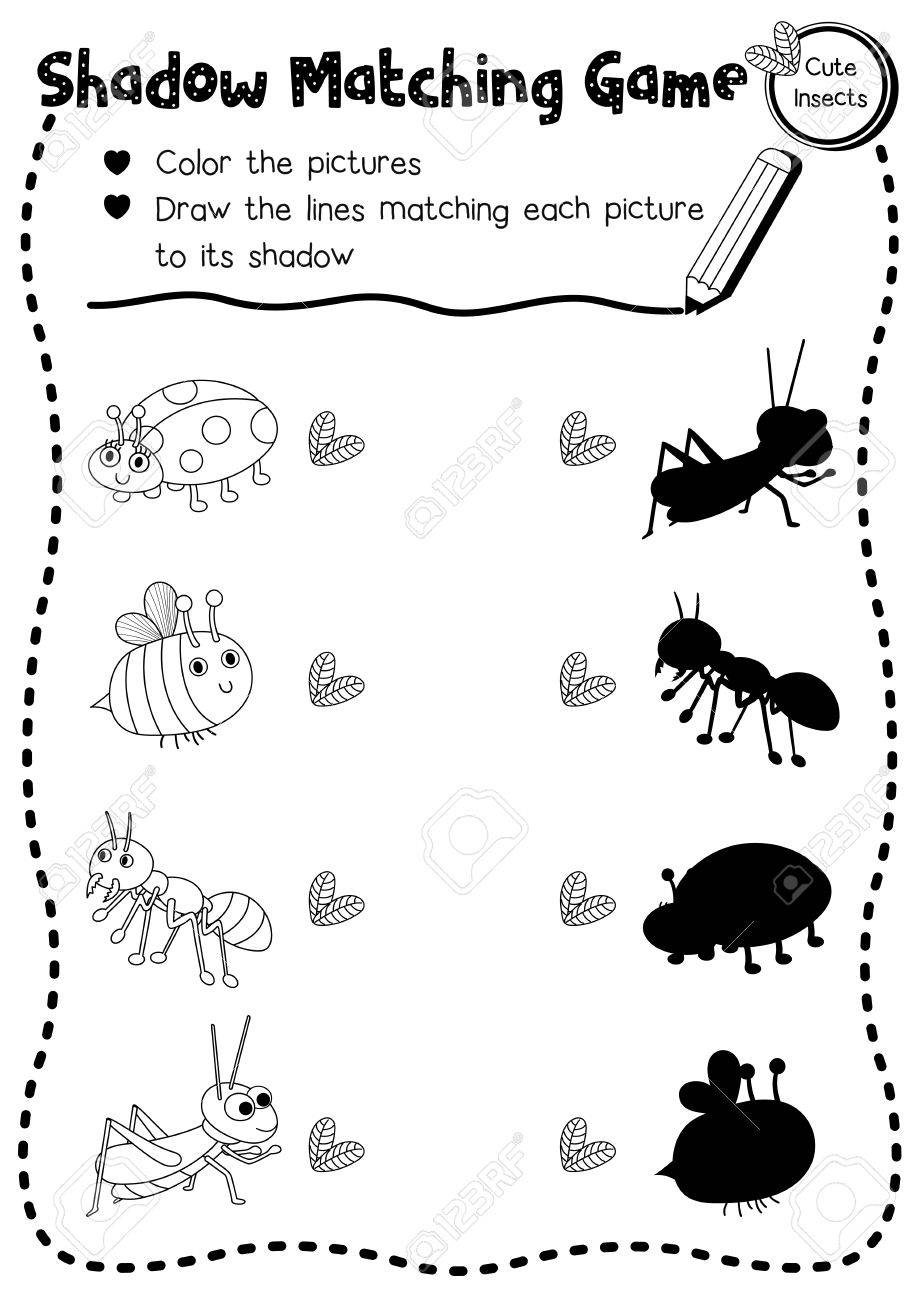 Shadow Matching Game Of Insect Bug Animals For Preschool Kids