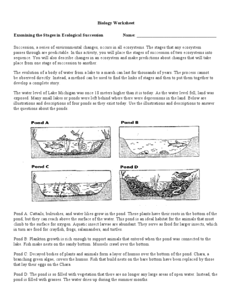 Succession In Ecosystems Worksheet The Best Worksheets Image