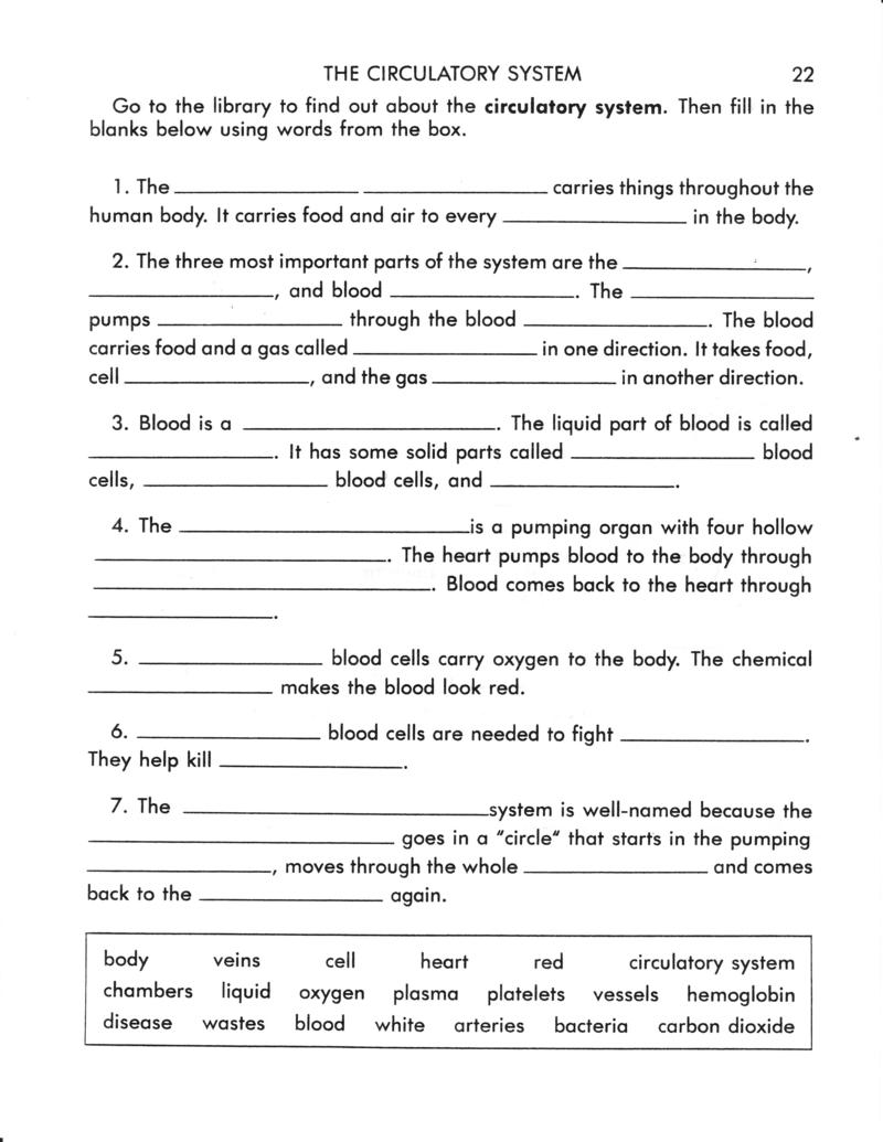 Circulatory System Worksheets Pdf