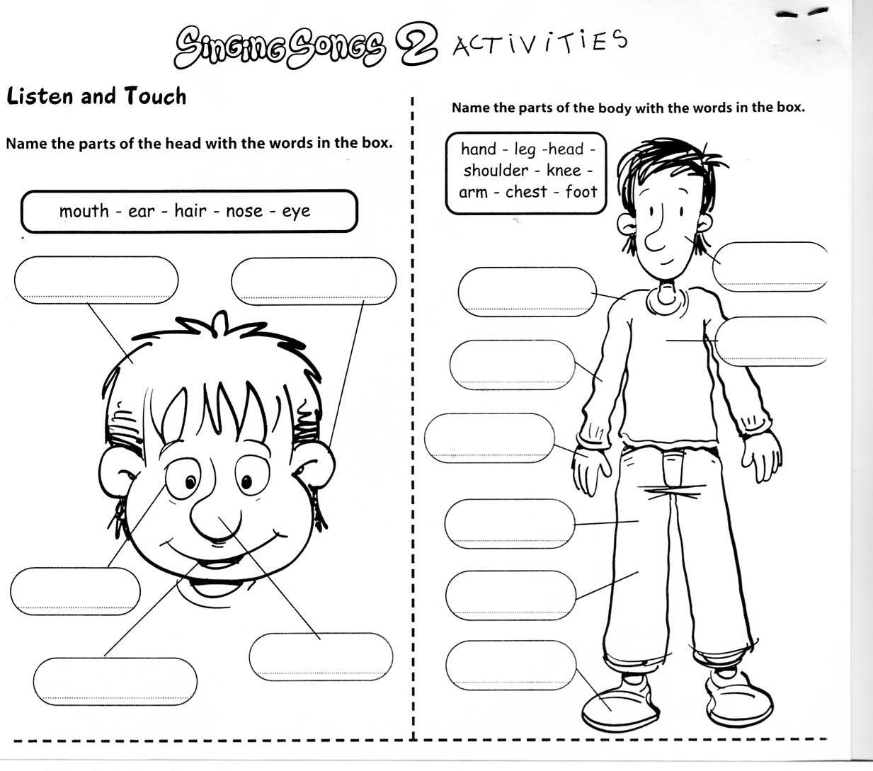 Useful Label Body Parts Worksheet For Kindergarten In Kindergarten