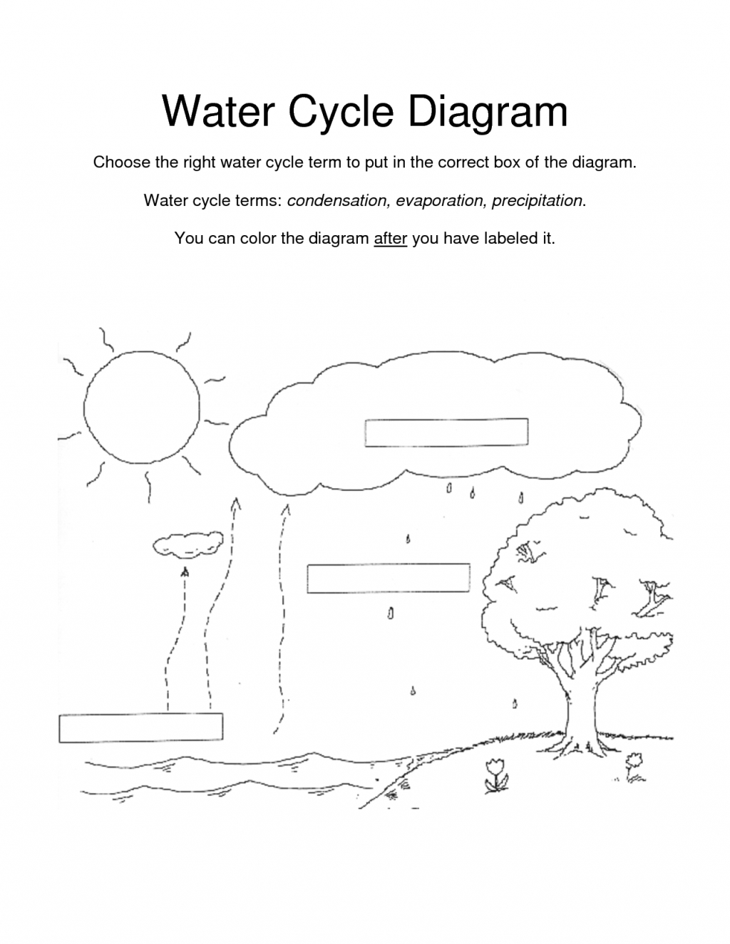 Water Cycle Worksheet Kindergarten For Kids Coloring Page Many