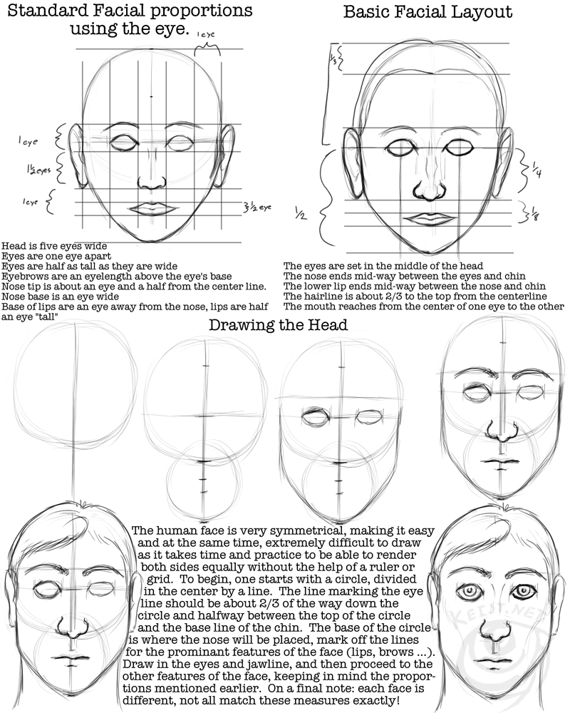28+ Collection Of Drawing The Human Face Worksheet