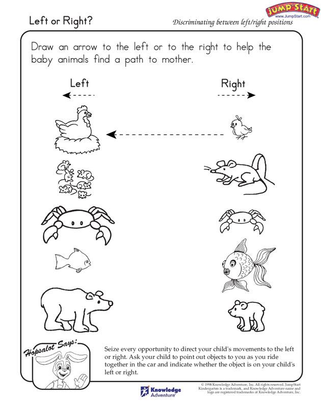 Baby Animals Worksheets Kindergarten Image Collections