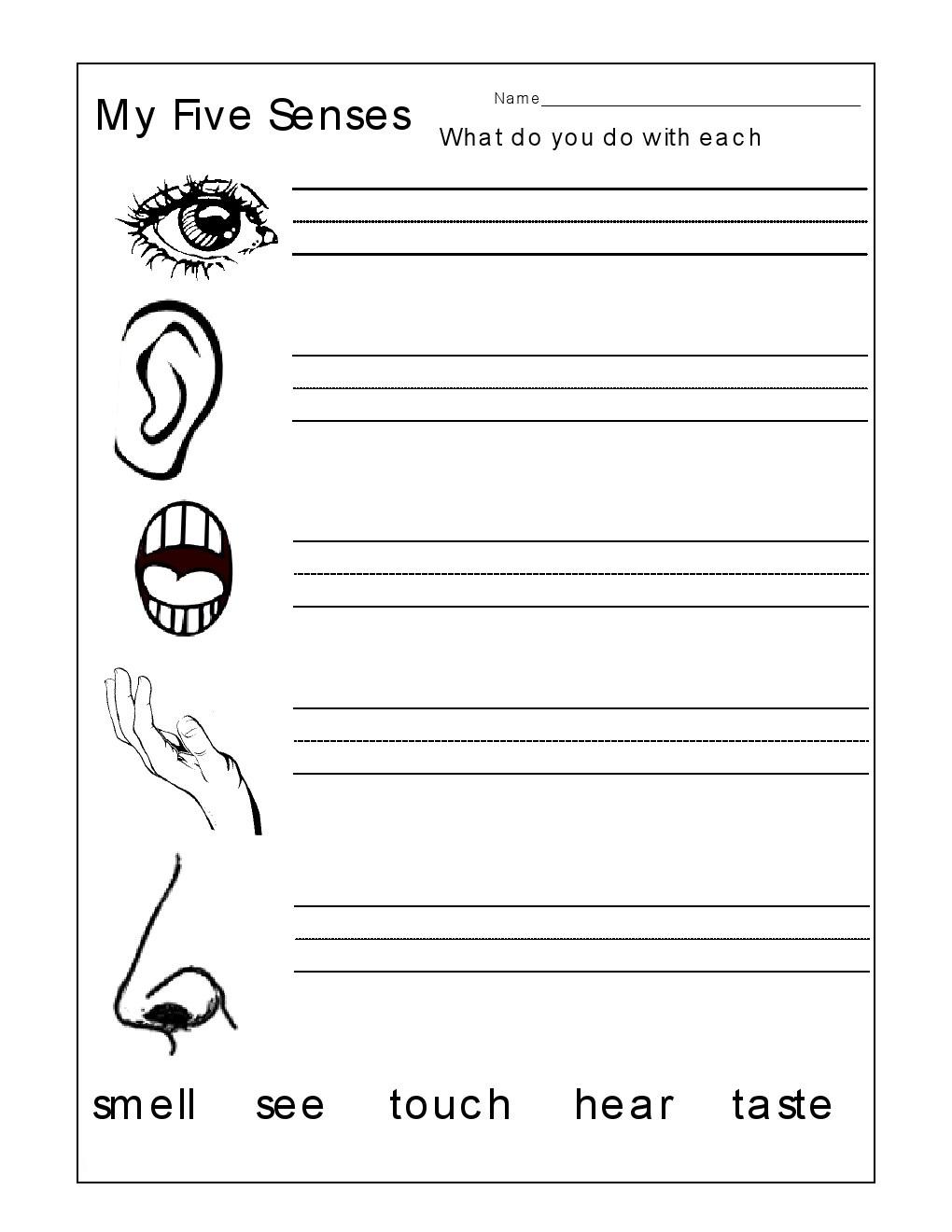 Collection Of Worksheets About Senses Preschool