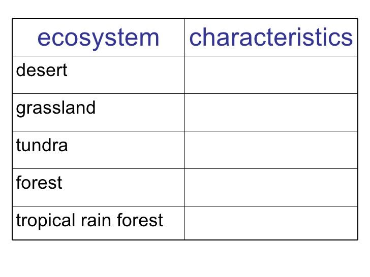 Ecosystem Worksheets For 5th Grade The Best Worksheets Image