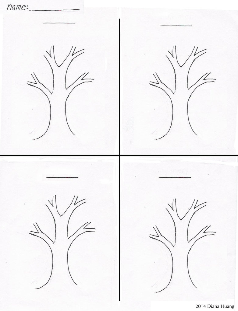 Four Seasons Tree Drawing Template Worksheet By Diana