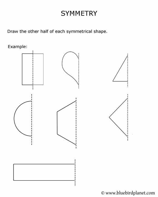Worksheet For Symmetry Gallery