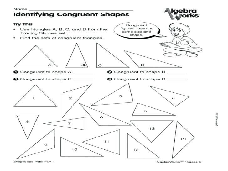 Proportions And Similar Figures Worksheet Congruent Shapes