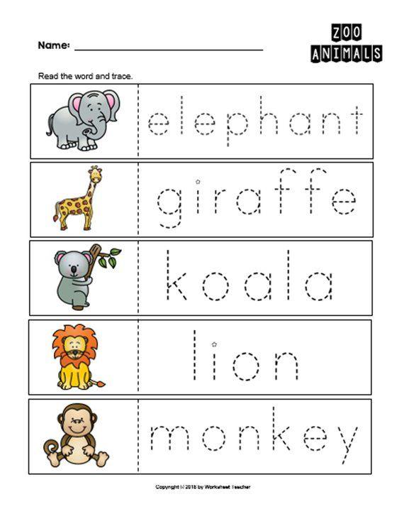 10 Arctic Animals Preschool Curriculum Activities