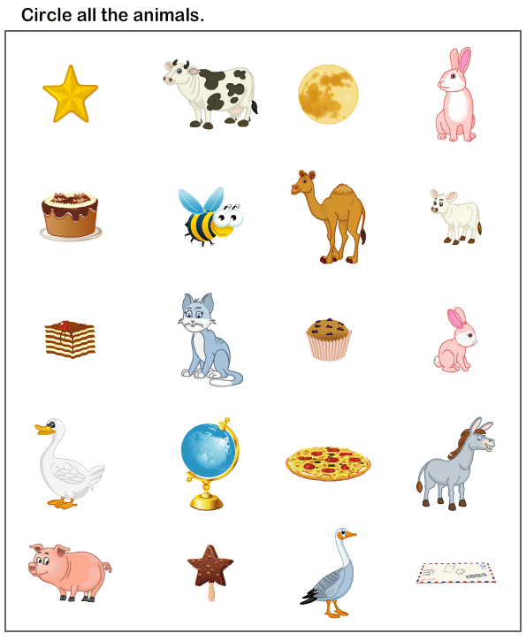 Preschool Worksheets, Animals Worksheets