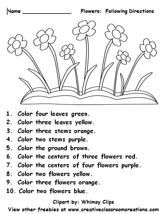 Freebie  Following Directions Students Will Love Reading Color