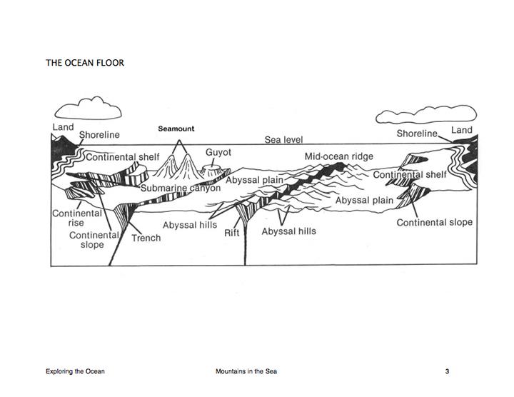 Here's A Nice Reproducible Diagram Of The Ocean Floor