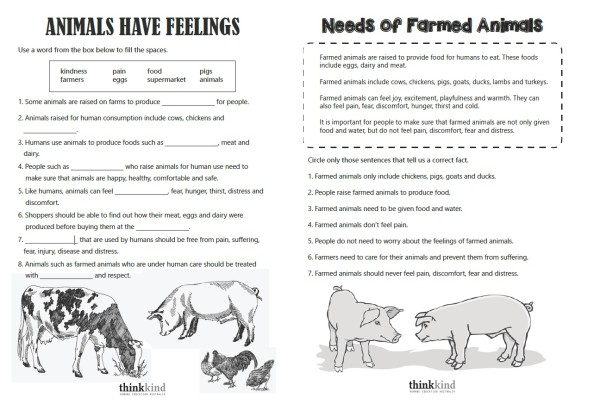 Meeting Needs Of Farm Animals, Student Worksheet