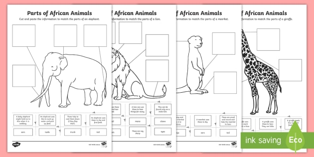 Parts Of African Animals Cut And Paste Worksheet   Worksheets