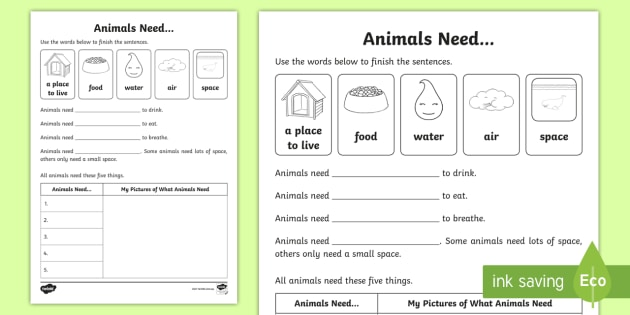 Animals Need Worksheet   Worksheet