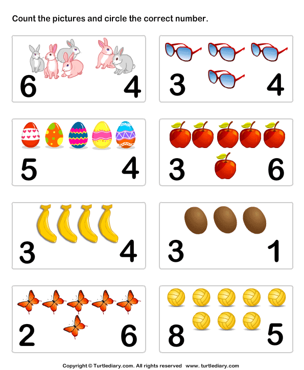 Count And Identify Number Of Objects Worksheet