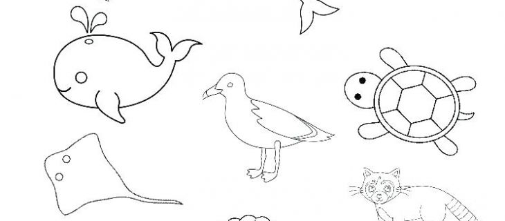 Esl Beginner Worksheet Esl Color Worksheets Animal Worksheets