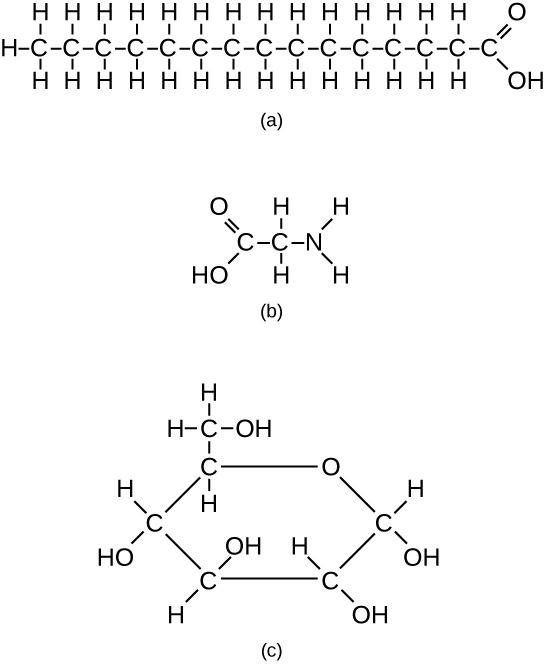 2 3 Biological Molecules – Concepts Of Biology