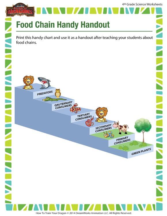 Food Chain Handy Handout Worksheet – Online Science Printable For