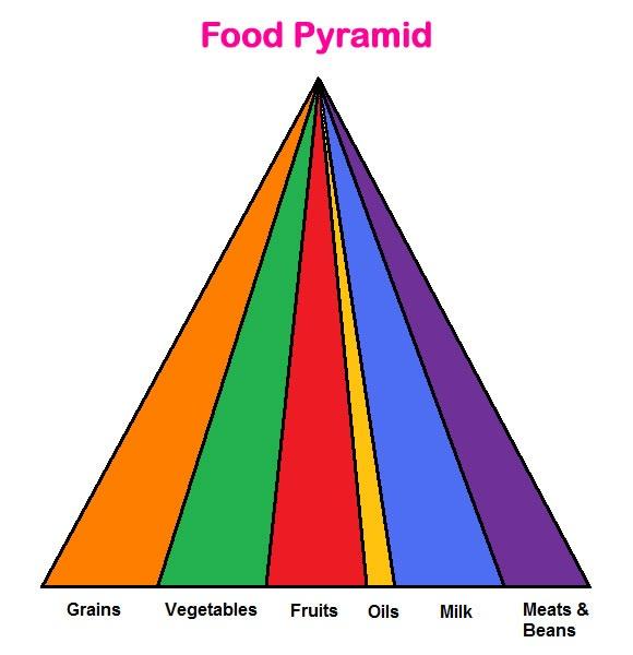 Food Pyramid Lesson & Worksheet