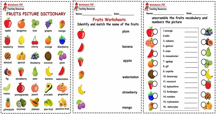 Fruits ( Activities
