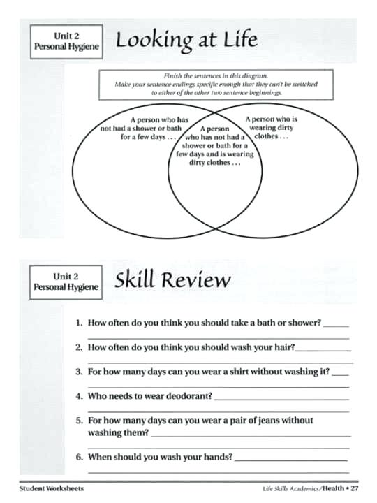 Elementary Library Skills Worksheets