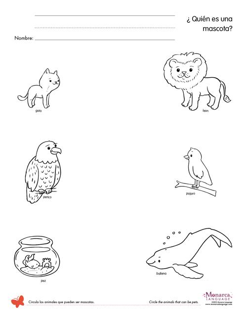 Pet Animals Pictures Worksheet